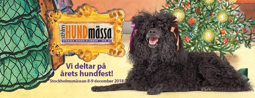 Stockholm Hundmässa – Rasmontern 2018