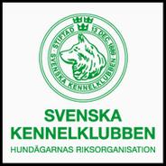 Registrering Vid Korsavel